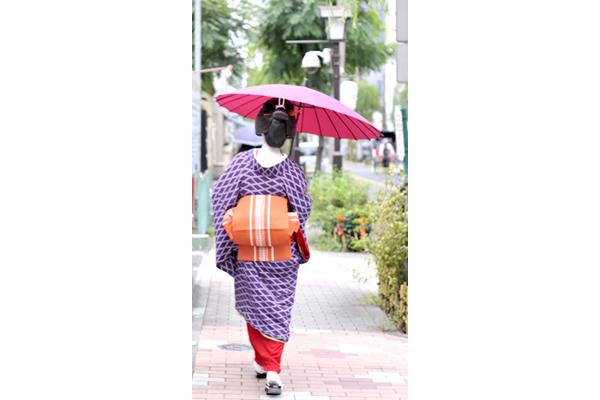 「浅草見番」に立ち寄ってから小雨の中、風流な柳通りを和風傘をさしてお仕事に向かう芸者さん。