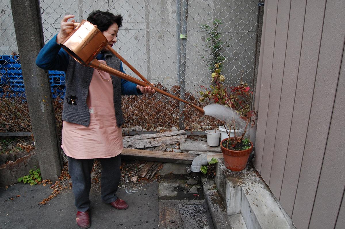 写真:絹江さんによる如雨露デモンストレーション