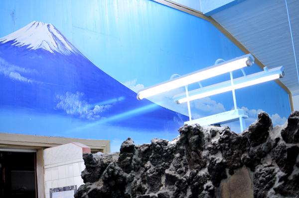 梅の湯 男湯側。壁の富士山の絵は故・早川利光さんの2004年の作品。男湯・女湯の間の壁は本物の富士山の溶岩が固まった岩が使われています。