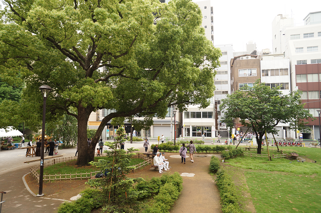 アーツ千代田3331の入り口付近のガーデン。緑が青々と茂っていました。