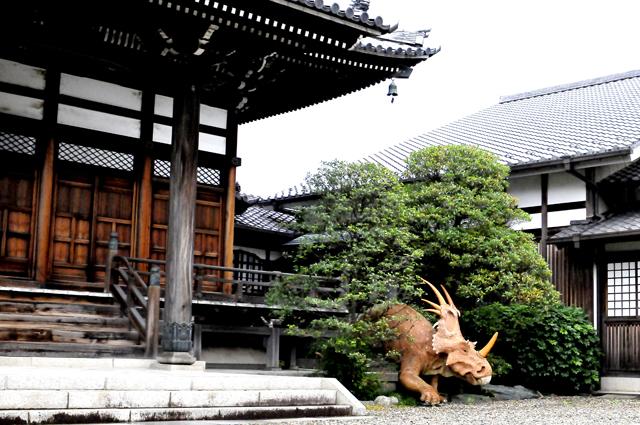 「證願寺」の門からは真正面に木造の威風堂々とした本堂と全長4メートル程の恐竜。子供たち必ず覗いていくそう。